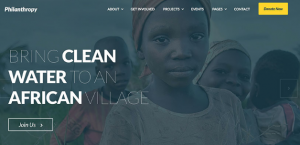 philanthropy wordpress theme.jpg 1000×727