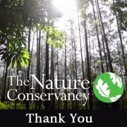 Donors: 5 video da cui prendere spunto per dire grazie ai donatori