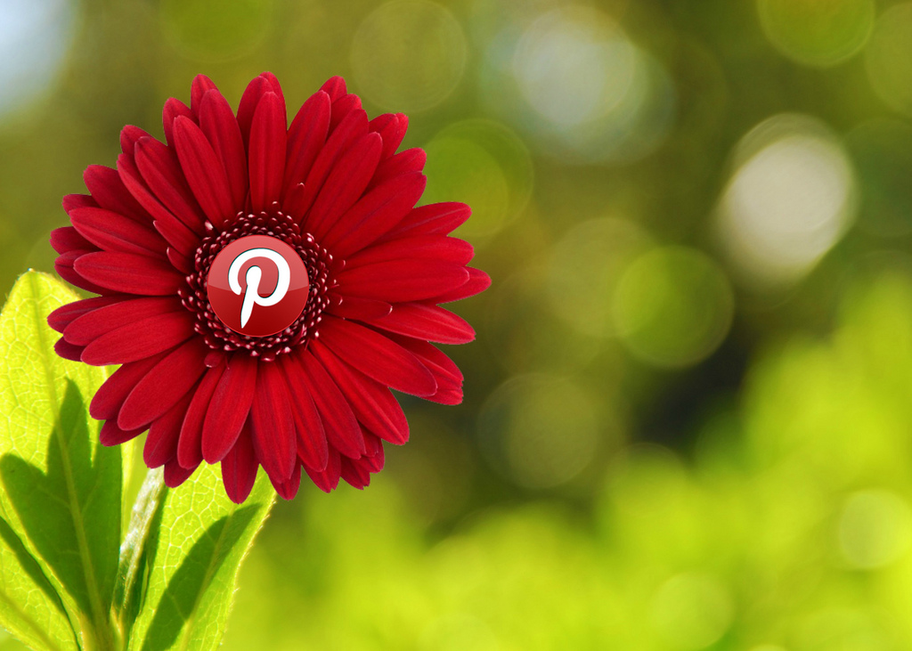 Pinterest: Brand Reputation Non Profit